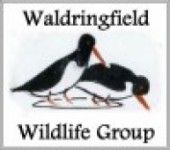 Waldringfield Verges Project